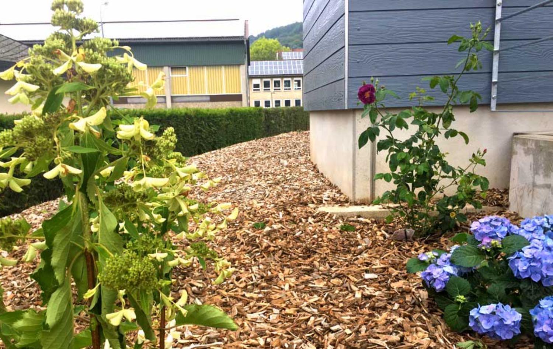 Galerie Engel Garten Sparda Vereintde
